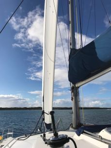 New Genoa by Evolution Sails Gold Coast